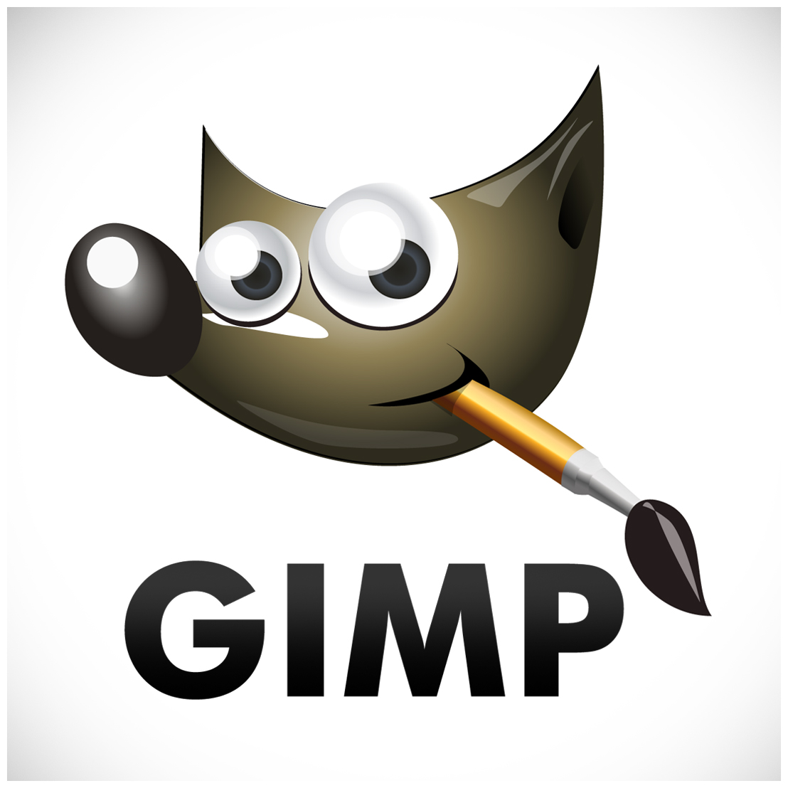 meaning of gimp